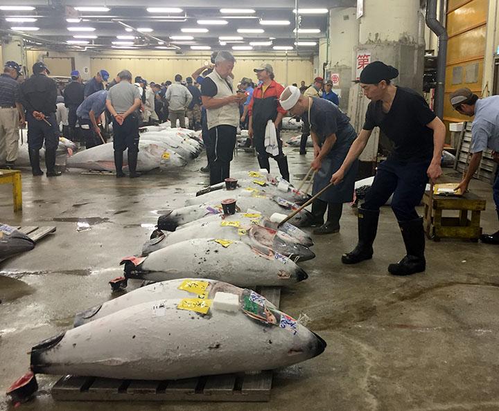 在場的工作人員,正在清理已賣出的冷藏鮪魚。