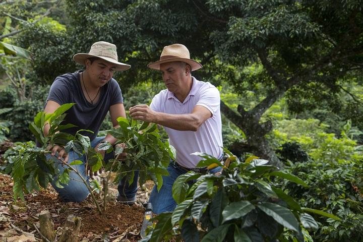 Nespresso 的 AAA 計劃,為咖啡農提供技術和知識等,從而做到提高品質、永續性及生產力三個主要目標。
