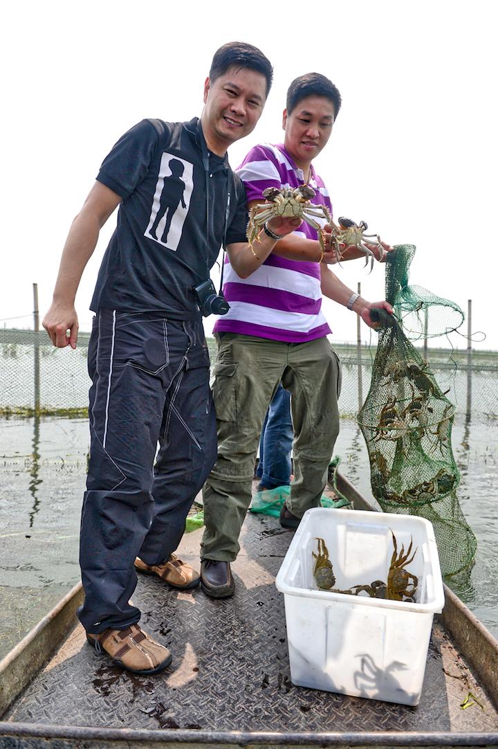 與李文星師傅在大閘蟹養殖場捕蟹。